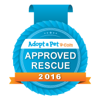 approved-rescue_blue-badge_logo-banner